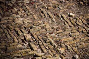 ancient-herrinbone-roman-road